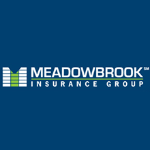 logo Meadowbrook Insurance Group